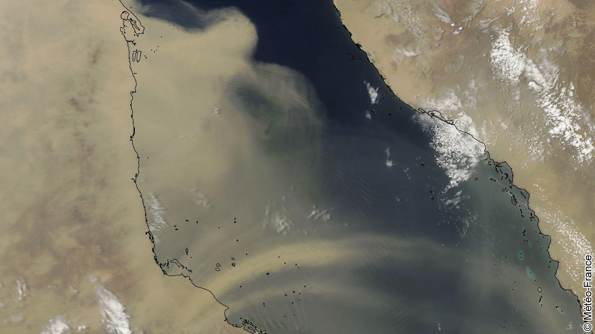 Ondulations sableuses en mer Rouge