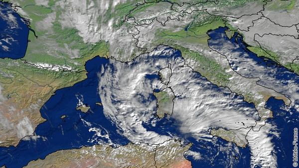 Olli touche la Corse