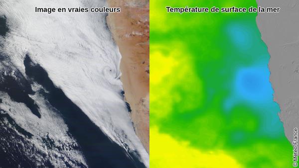 Tourbillon nuageux, upwelling et courant de Benguela !