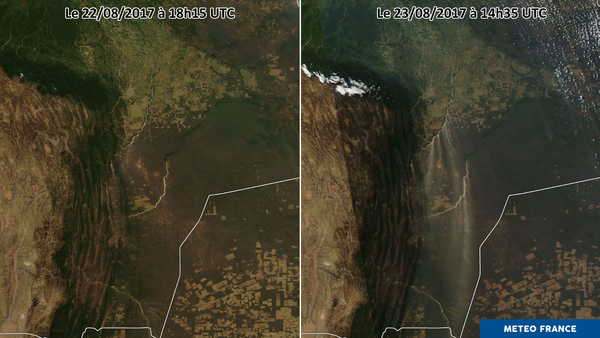 Dunes de sables aux portes de la jungle de l'Amérique du Sud