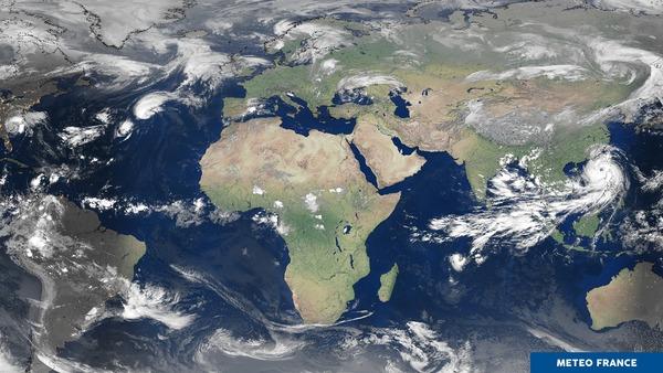 6 phénomènes tropicaux à trouver sur cette image !