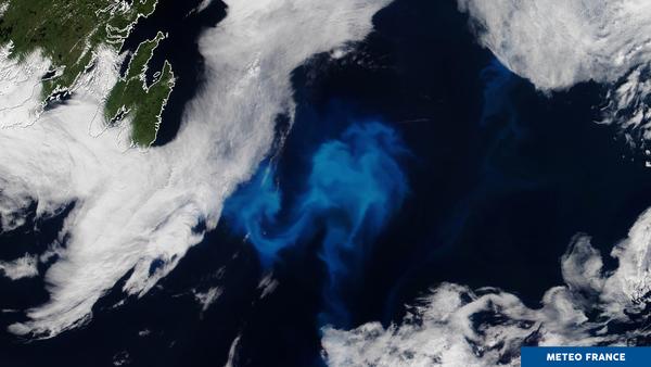 Explosion de couleurs au large de Terre-Neuve